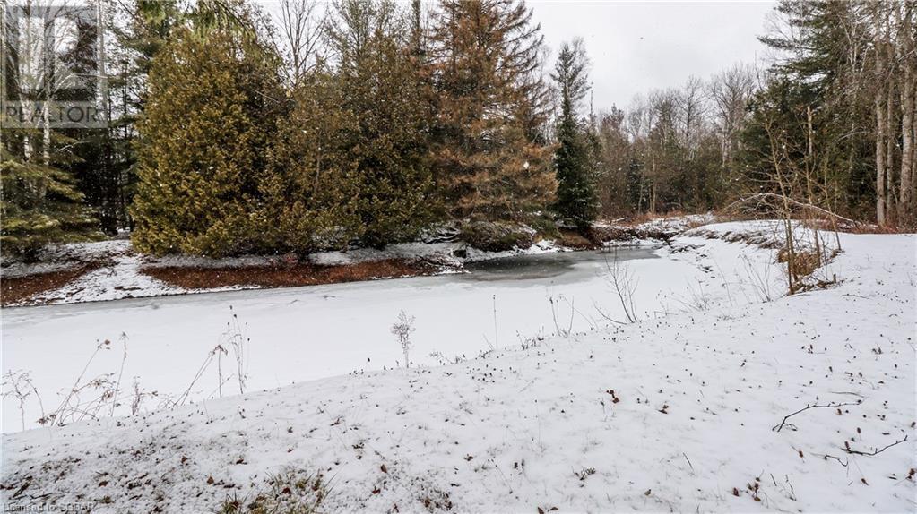 8104 8th LineUtopia, Ontario  L0M 1T0 - Photo 34 - 252706